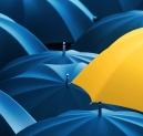 Pestra izbira dežnikov